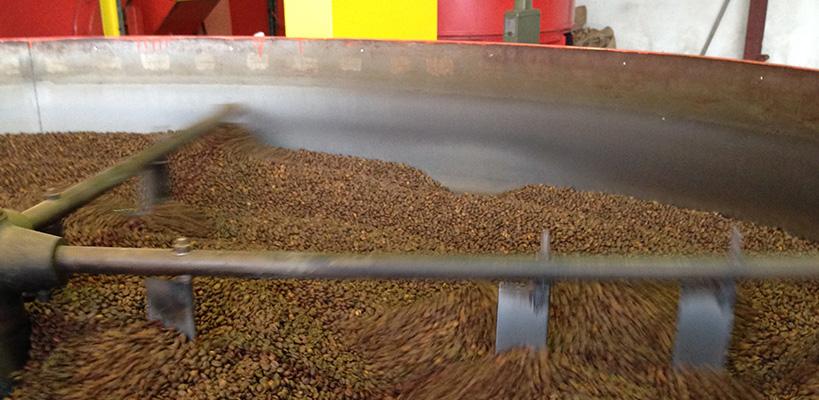 Torréfaction Cacao & épices