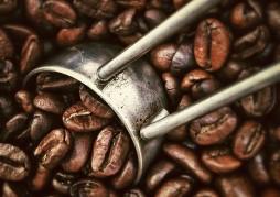 torréfaction_café