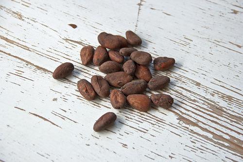 cocoa-bean-1282889_640